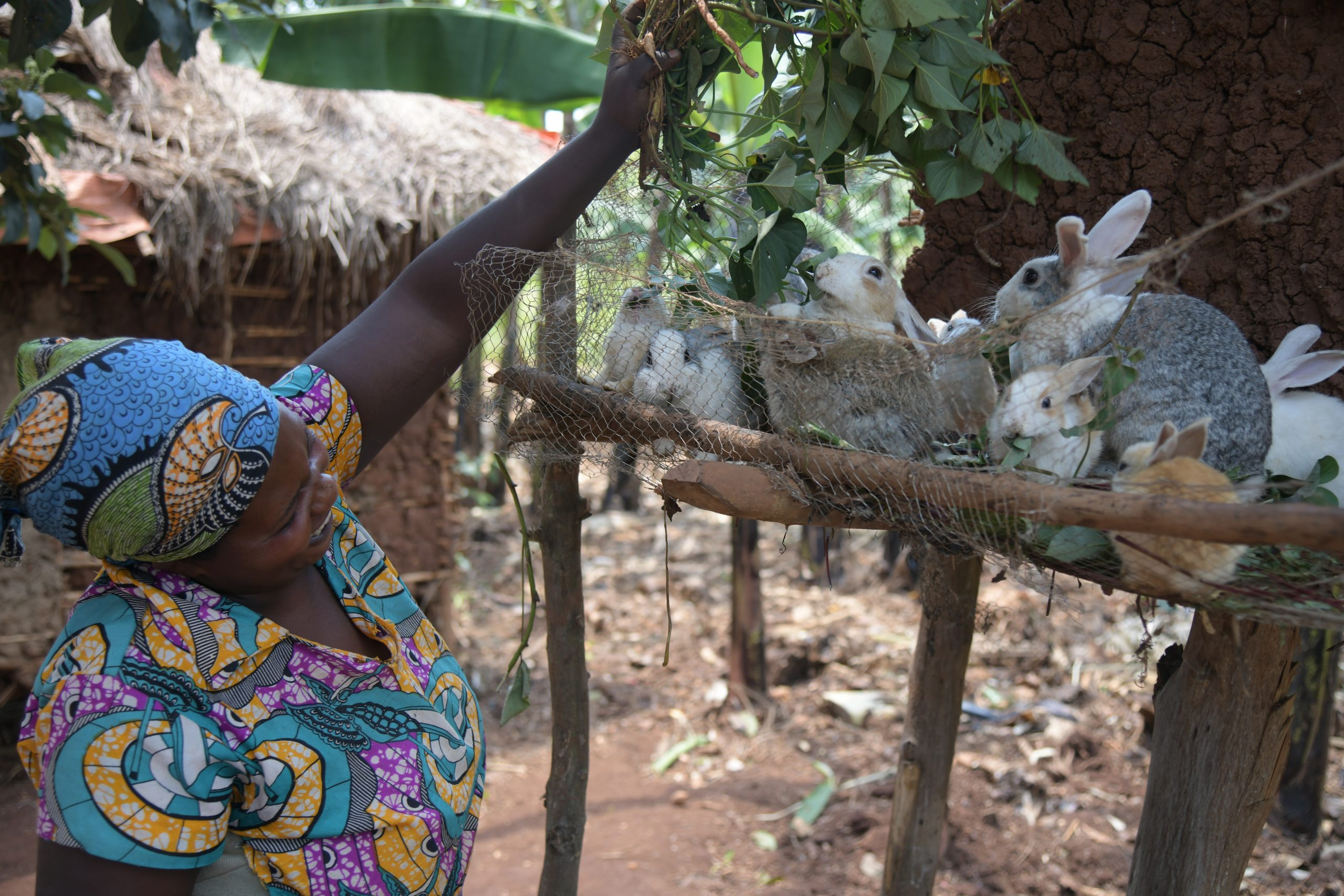A participant with her rabbits which she sells monthly for an income